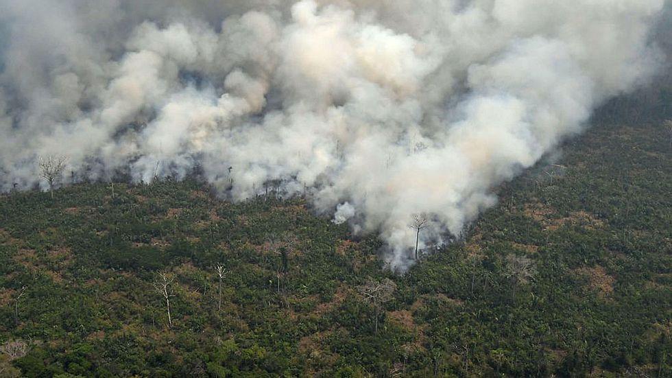 Wer ist wirklich für die Amazonsbrände verantwortlich?