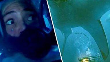 47 Meters Down: Dieser Hai-Film ist dein schlimmster Alptraum