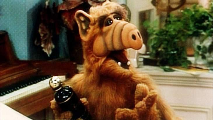 Alf: Er hat Katzen zum Fressen gern