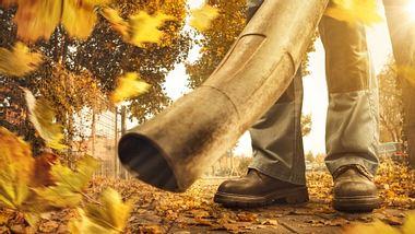 Akku Laubsauger Laubbläser - Foto: iStock/photoschmidt