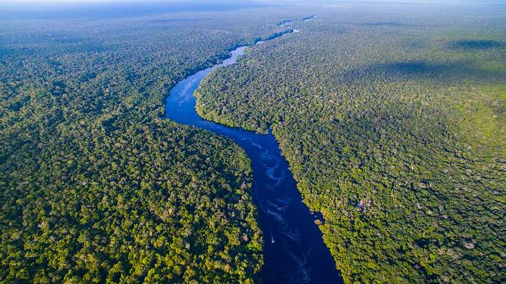 Der Amazonas in Brasilien