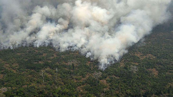 Teile des Regenwaldes im Amazonas brennen.