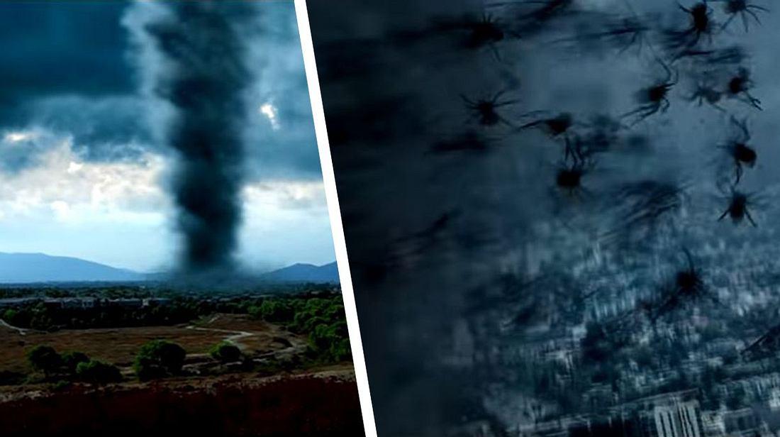 Arachnado: Spinnen-Tornados kommen