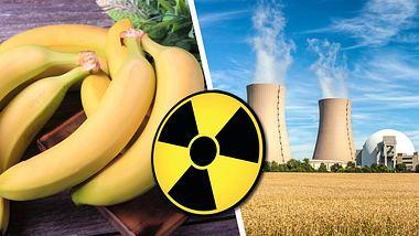 Warum Bananen essen schlimmer ist, als neben einem Atomkraftwerk zu leben