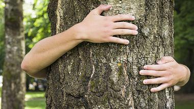 Die Liebe zur Natur - Foto: iStock / georgeclerk