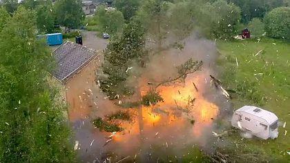 Das passiert, wenn Männer Bäume mit Sprengstoff fällen