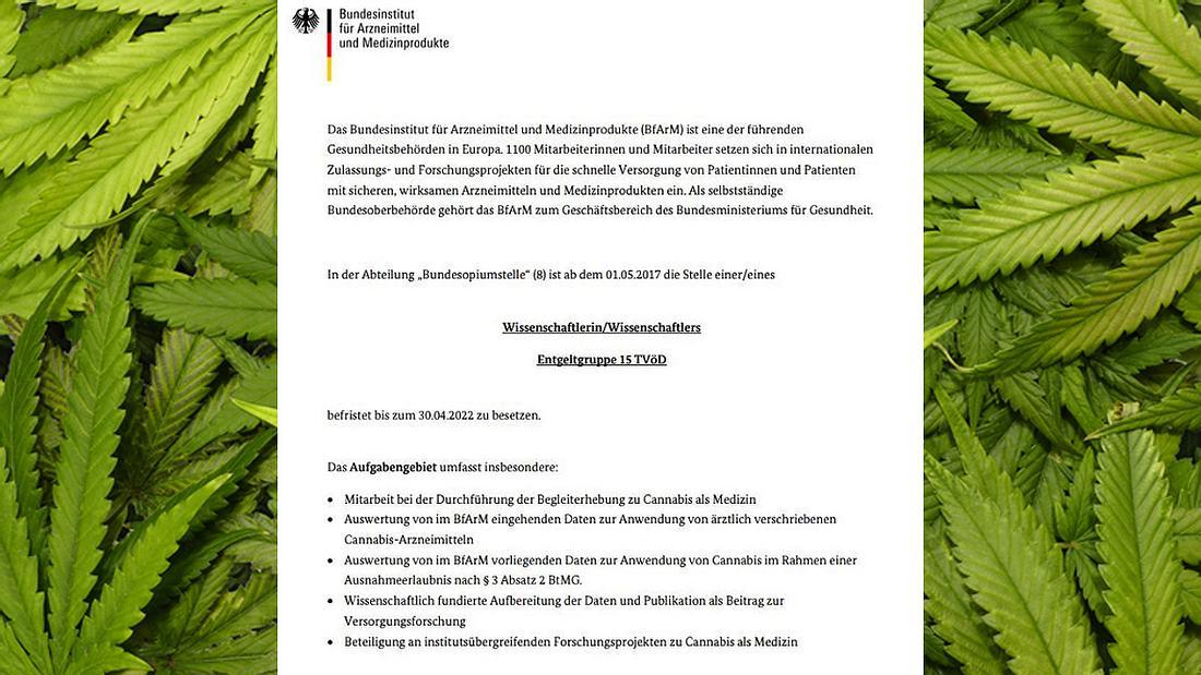 Bundesinstitut sucht Cannabis-Experten