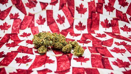 Kanada legalisiert Cannabis-Konsum zu Erholungszwecken