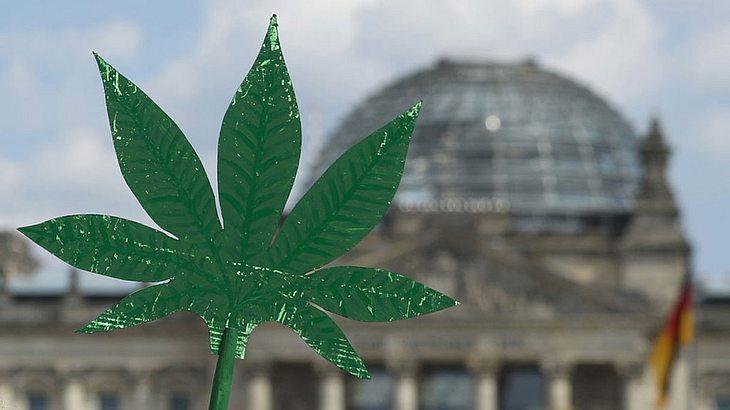 FDP will Cannabis exportieren.
