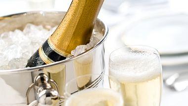 Die stilvollsten Champagnerkühler im Vergleich
