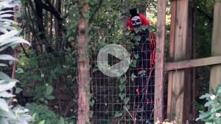 Dieser unheimliche Clown belästigte die Bewohner des Roanoke County im US-Bundesstaat Virginia