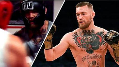 Conor McGregor im Sparring ausgeknockt