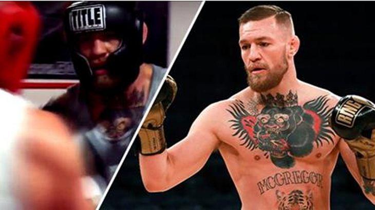 MayMac: Conor McGregor wurde angeblich im Sparring für Floyd Mayweather ausgeknockt