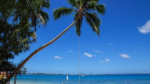 Tonga - Foto: iStock