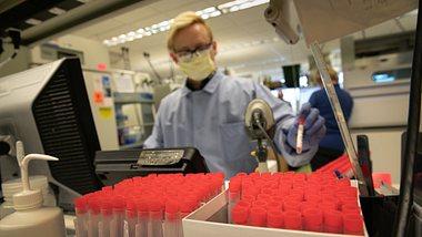 Forscher verbreitet Hoffnung: Corona-Medikament schon in zwei Monaten?