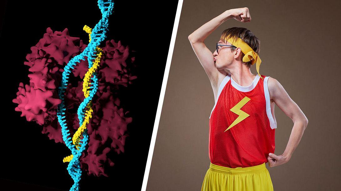 CRISPR-Cas-9-Verfahren für mehr Muskeln - Foto: iStock / Meletios Verras, Lacheev