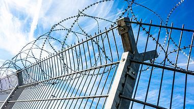 Dänemark baut Zaun an Grenze zu Deutschland