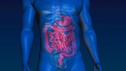 Gift ade! Mit nur 2 Zutaten holst du bis zu 7 Kilo Darmreste aus deinem Körper