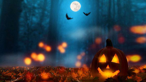 Zu Halloween: 10 düstere Orte in Deutschland