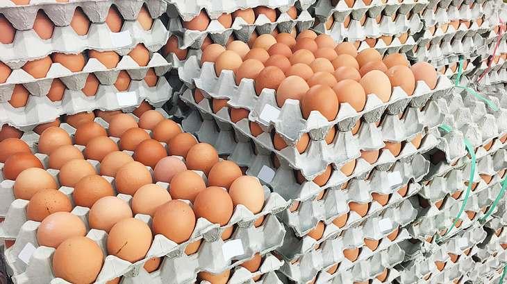 Fipronil-Skandal: Aldi nimmt verseuchte Eier aus dem Sortiment