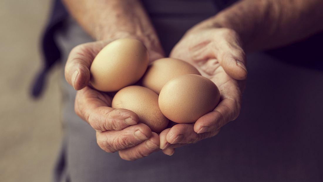 Wie lange sind frische Eier haltbar?