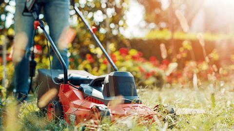 Ein Mann mäht den Rasen mit seinem Elektro-Rasenmäher - Foto: iStock/Ivanko_Brnjakovic