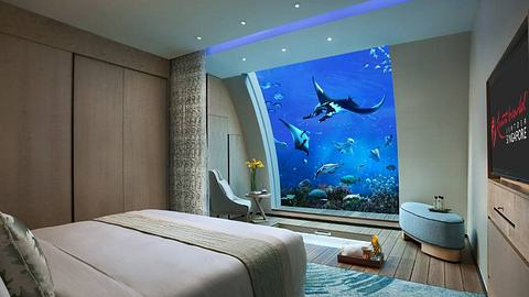 Hier schläfst du in einem der größten Aquarien der Welt