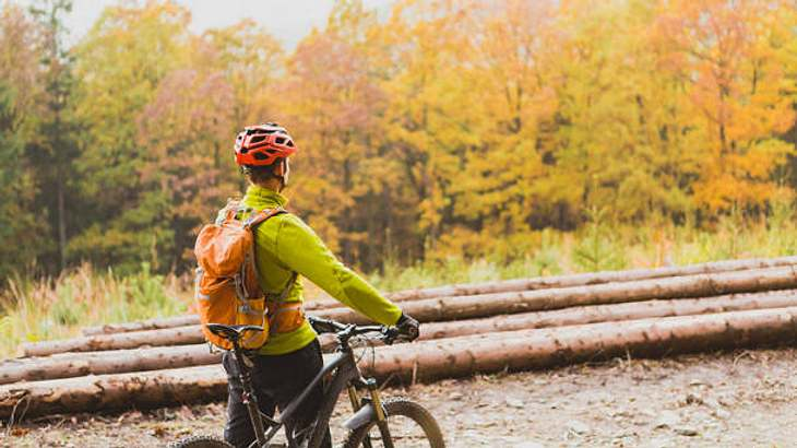 Fahrradjacke Herren Wald
