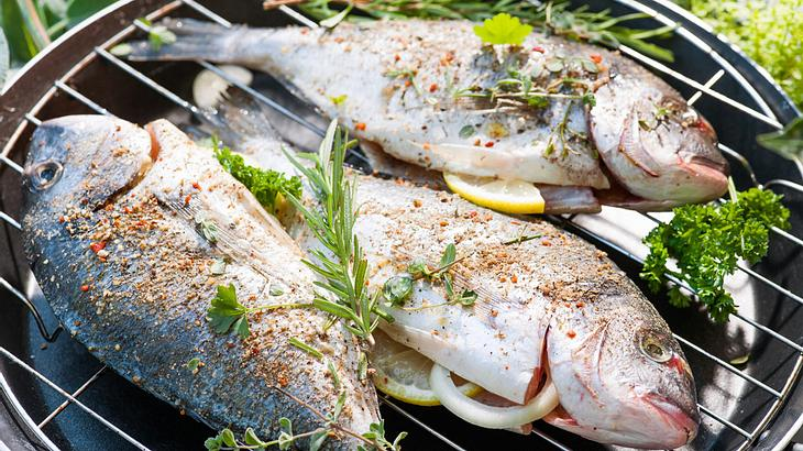 Einfache und leckere Rezepte zum Fisch grillen