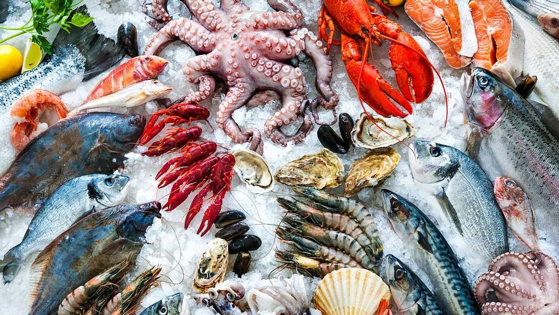 Diese Fische eignen sich zum Grillen: Forelle, Lachs, Garnelen, Makrele, Dorade, Thunfisch und Tintenfisch