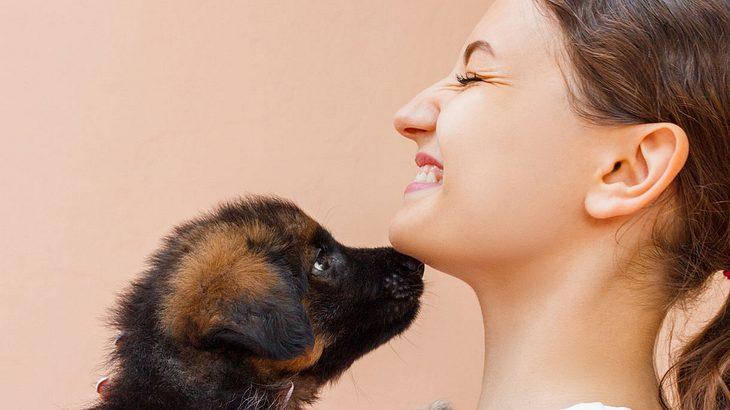 Netz-Aufreger: Frau stillt Hundewelpen
