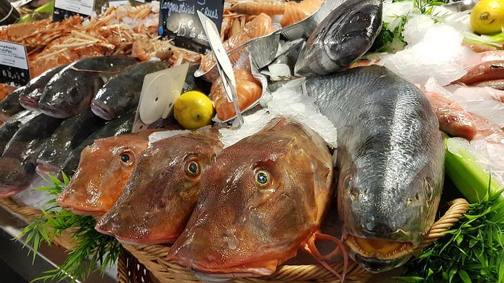 Frischer Fisch glänzt und stinkt nicht