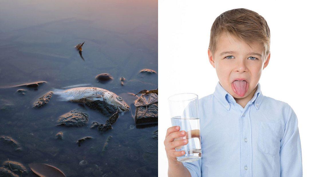 In vielen europäischen Städten ist das Wasser gesundheitsschädlich