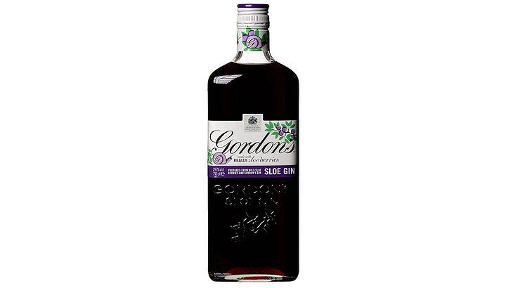 Gordon's Sloe Gin Likör