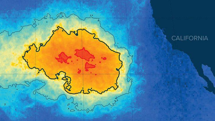Die Ausmaße des Great Pacific Patchs sind unglaublich