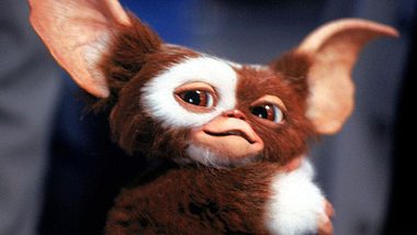 Gremlins: Serie um die kleinen Monster kommt