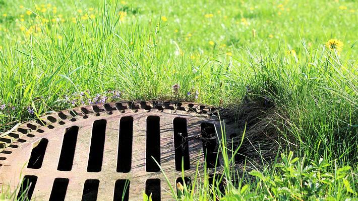 Gullideckel im Garten - Foto: iStock / Andie_Alpion