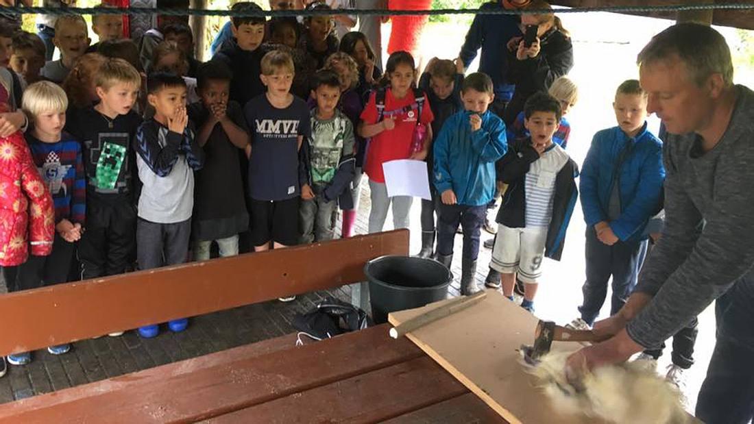 Ein Lehrer schlachtet vor seinen Schülern einen Hahn