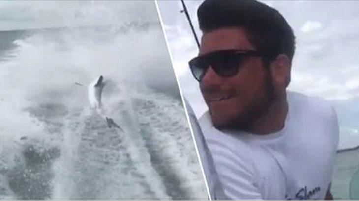 Eine Gruppe Männer zieht einen lebenden Hai hinter einem Speedboot her