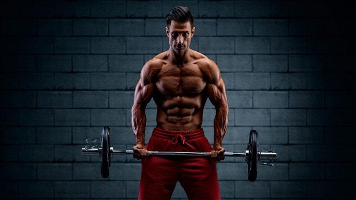 Muskulöser Mann dank des richtigen Hanteltrainings