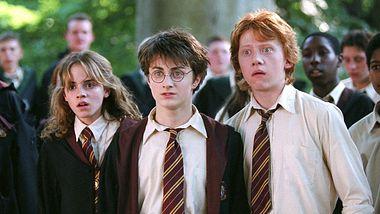 Harry Potter: Diese Sex-Szene hat fast jeder übersehen