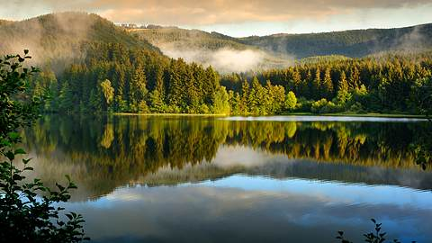 Diese 5 Sehenswürdigkeiten im Harz sind ein Muss