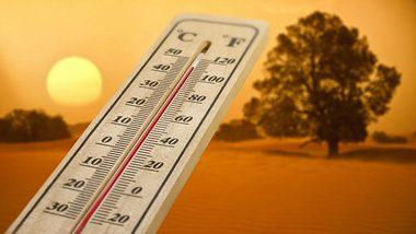Heißes Wetter - Foto: iStock
