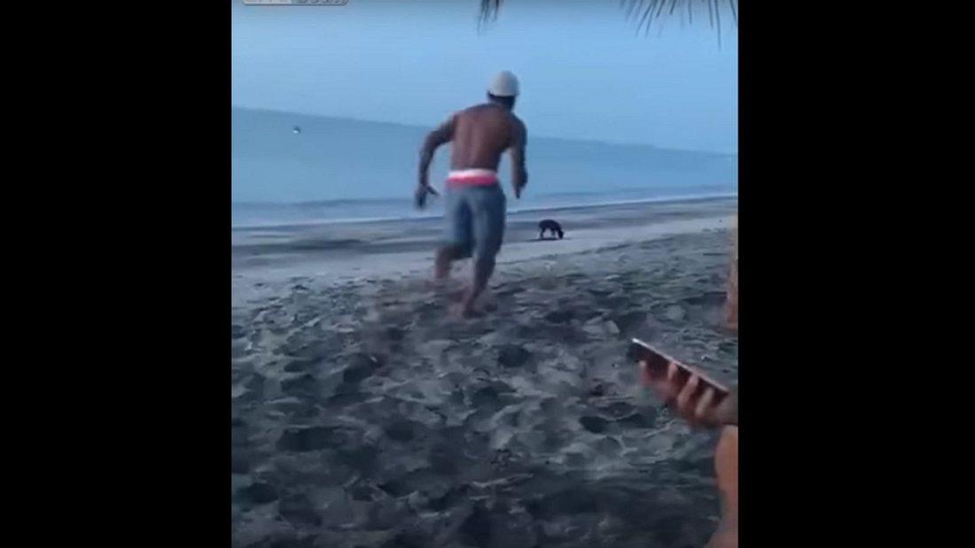 Karma: Ein Mann tritt einen Hund am Strand