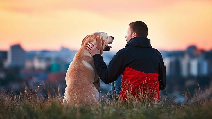Neue Studie: Hundebesitzer leben länger