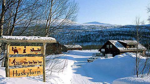 Mitarbeiter für eine Huskyfarm in Norwegen gesucht