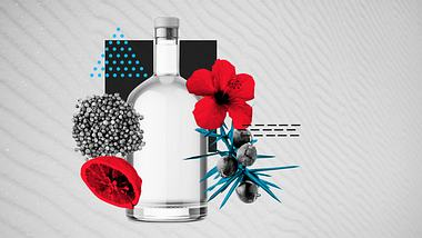 Gin selber machen: Per DIY zum Traumgetränk
