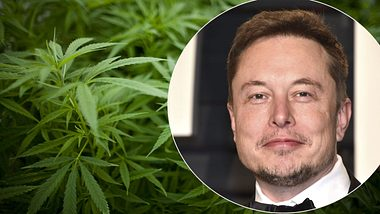 Elon Musk: Tesla-Gründer beliefert Weltraumstation mit Cannabis