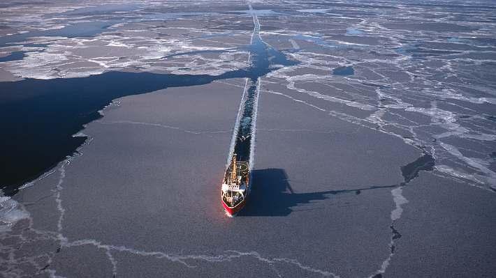 In der Arktis - Foto: iStock / westphalia