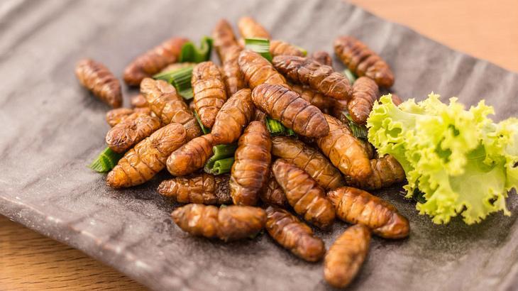Ab 2018: Insekten-Food in Deutschland legal